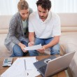 Portrait of couple doing their accounting with laptop — Stock Photo #11205827