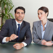 Business team negotiating - Stock Photo