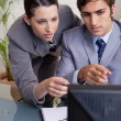 Stock Photo: Businesswomhelping her new colleague