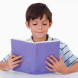 Focused boy reading a book — Stock Photo #11209233