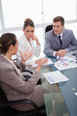 Business team talking about survey — Stock Photo