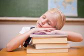 Ragazza dorme sui suoi libri — Foto Stock