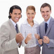 Stock Photo: Successful businessteam standing