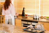 Boy sneaking up to cookies — Stockfoto