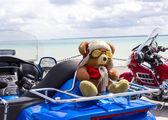 Teddy Bear toy on the blue motorbike on a seashore — Stock Photo
