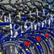 Stock Photo: Bikes in row for rent on island Texel, Netherlands