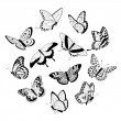 Flying black & white butterflies — Stock Vector