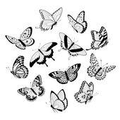 Flying black & white butterflies — Stock Vector