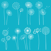 Set of dandelions — Stock Vector