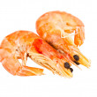 Two boiled shrimp isolated on white background - Stock Photo