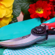 Gardening tools with flowers - detail — Stock Photo