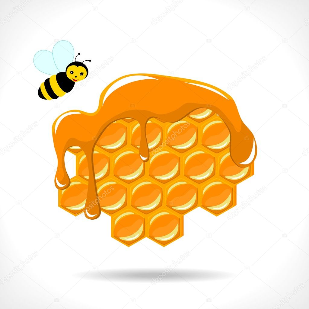 Honeycomb with a bee on white background - vector illustration — Vettoriali Stock  #10925640
