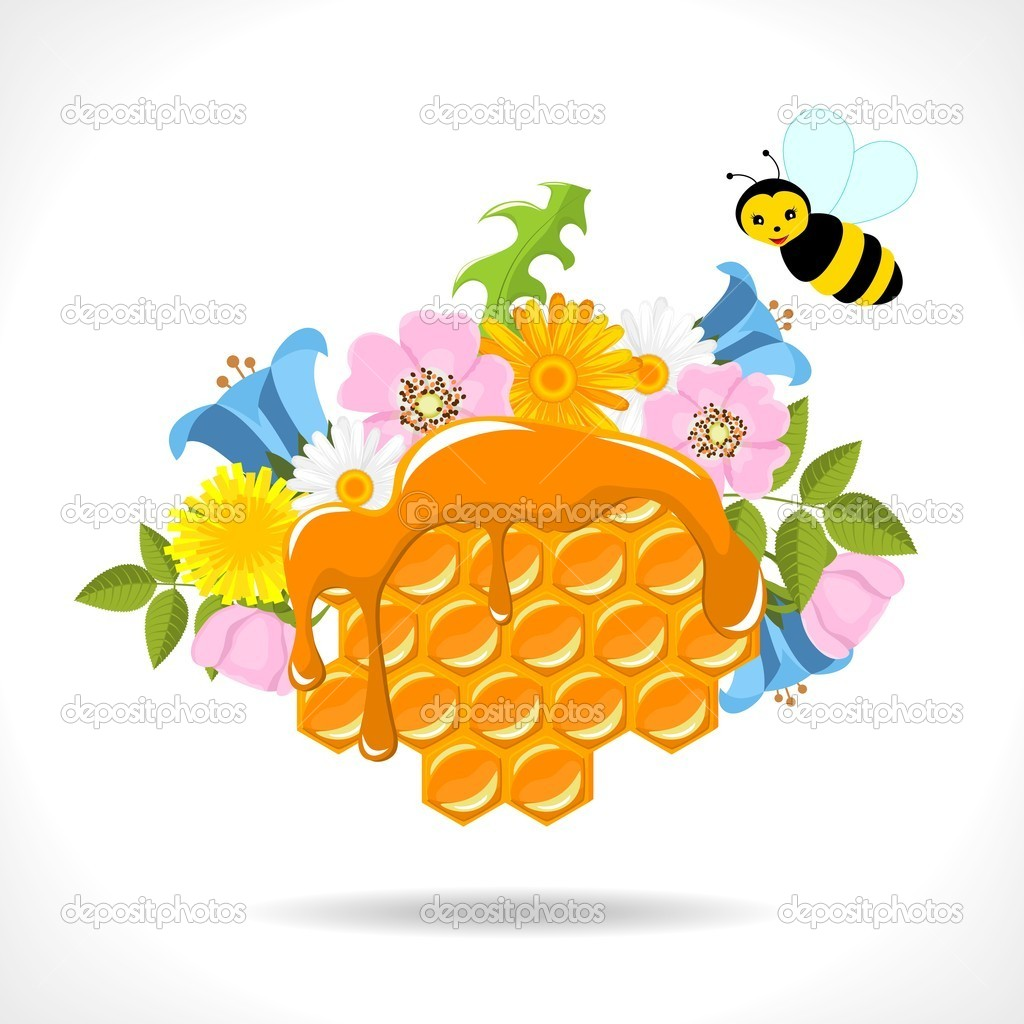 Honeycomb with honey, flowers and two cartoon bees on white background - vector illustration — Stock Vector #10925642
