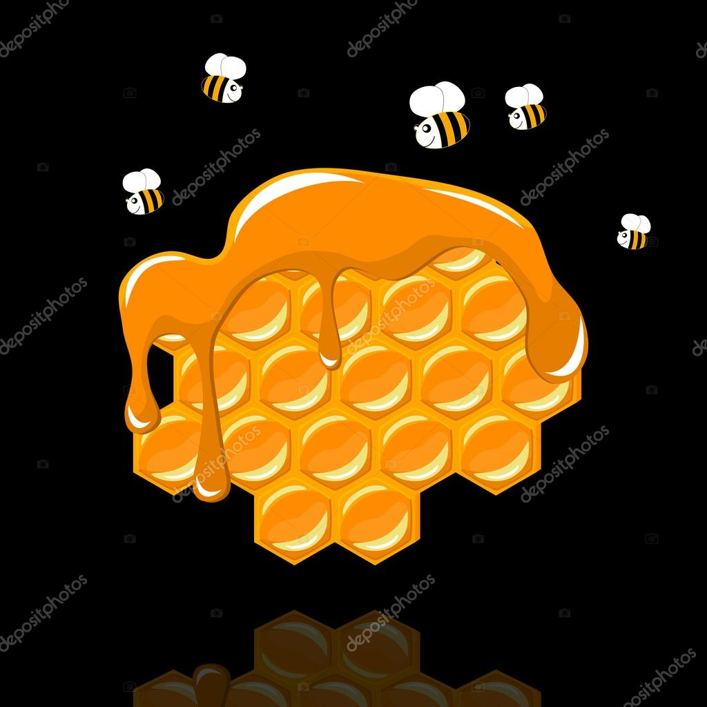 Honeycomb with a bee on black background - vector illustration — Vettoriali Stock  #11075242