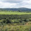 Panoramic view of Dartmoor landscape — Stock Photo