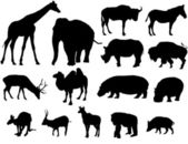 Large herbivores silhouette — Stock Vector