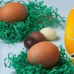 Pasqua - easter eggs — Stock Photo #11733658