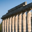 Royalty-Free Stock Photo: Colonne valle dei templi paestum