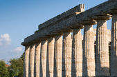 Colonne valle dei templi пестум — Стоковое фото
