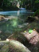 Spirit of the River I — Stock Photo