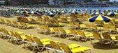 Sea of Umbrellas — Stock Photo