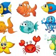Fish collection — Stock Vector #10748853