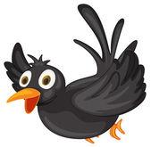 Black bird — Stock Vector