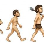 Evolution of man — Stock Vector