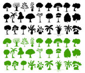 Variety of trees — Vector de stock