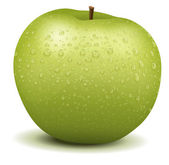 Realistische apple — Stockvector