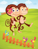 Two monkeys — Stock Vector