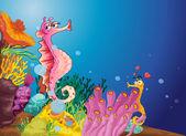 Seahorse love — Stock Vector