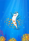Shark fish — Stock Vector