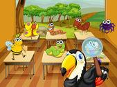 Animals in classroom — Stock Vector