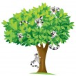 Squirrels on tree — Stock Vector