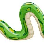 Snake — Stock Vector