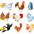 Collection of birds — Stock Vector #11580247