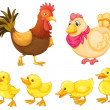 Stock Vector: Chicken family