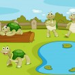 Stock Vector: Turtles