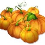 Pumpkins — Stock Vector #11587456