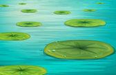 Calm pond scene — Stock Vector