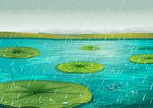 Rain on the pond — Stock Vector