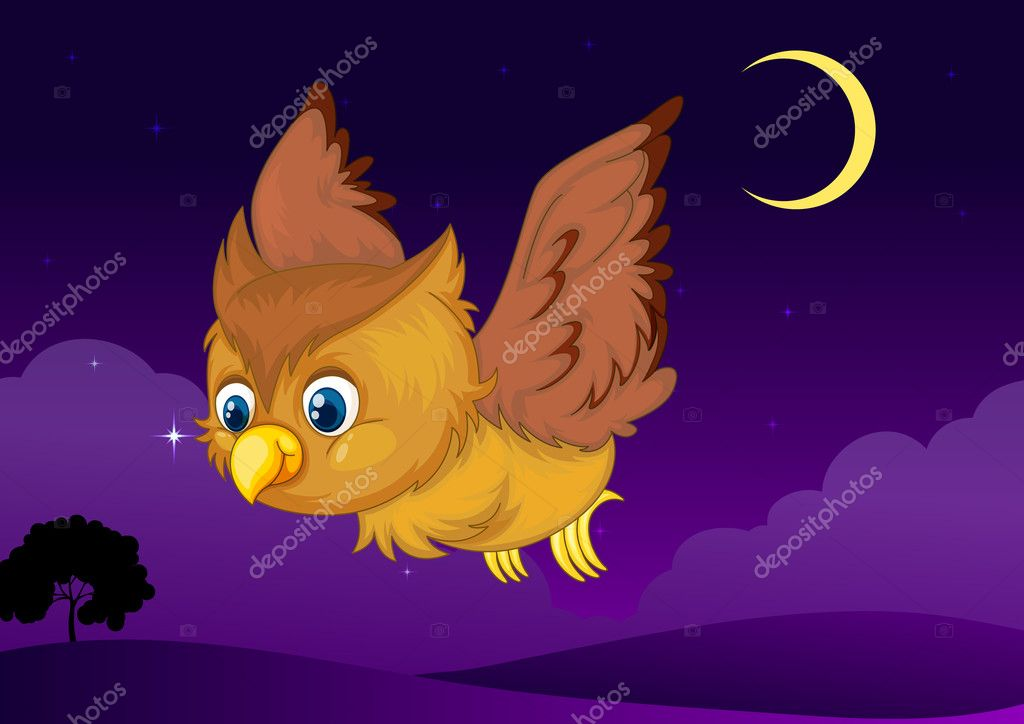 Illustration of flying owl in a dark night — Stock Vector #11587462