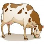 Cartoon cow — Stock Vector #11721358