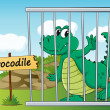 Crocodile in cage — Stock Vector