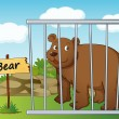 Bear in cage — Stock Vector