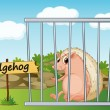 Hedgehog in cage - Stock Vector