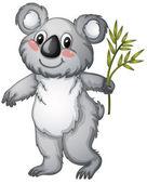 Koala — Stock Vector