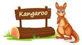 Kangaroo and name plate — Stock Vector
