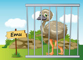 Emu in cage — Stock Vector